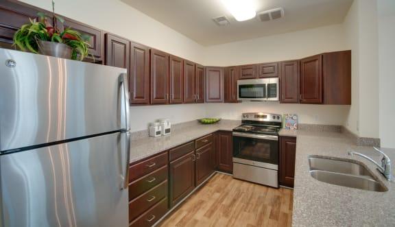 RiverWatch Apartments Modern Kitchen