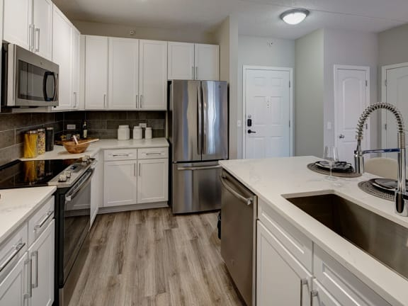 Efficient Appliances In Kitchen at The MilTon Luxury Apartments, Illinois