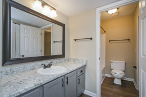 The Slate at Ninety-Six Modern Bathroom with Large Vanity and Separate Room with Shower Tub and Toilet