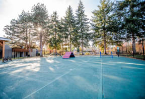 Tacoma Apartments - Northpoint Apartments - Dog Park for Large Dogs