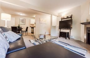 Everett Apartments - Tessera Apartments - Living Room, Dining Room, and Kitchen