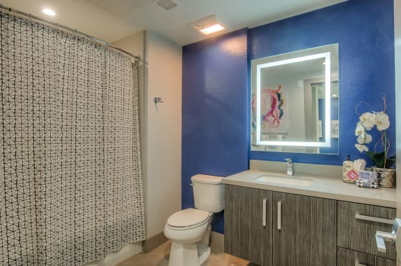Modern Bathroom Finishes at The Mansfield at Miracle Mile, California