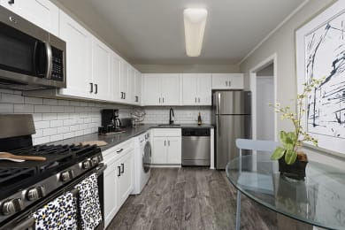 PLATINUM Premium Upgraded Kitchen with Stainless Steel Appliances at Trillium Apartments in Fairfax