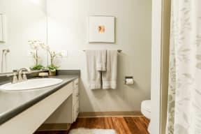 Renton Apartments - The Aviator Apartments - Bathroom