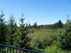 Nature Preserve View at Willina Ranch, Washington