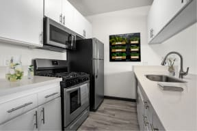 Newly Renovated Kitchen