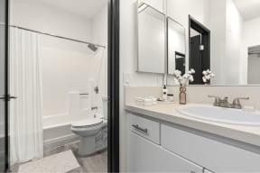 Bathroom with Separate Vanity