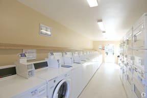 Picture of Laundry Room with all washers and dryers in view