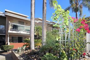 Viewing dwelling building through courtyard foliage