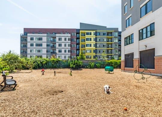 cambridge park apartment dog park