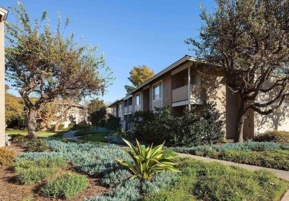 Green landscaping, at Patterson Place, Santa Barbara, 93111