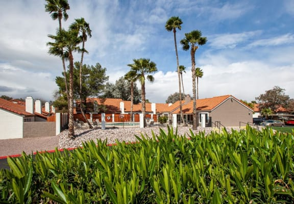 Exterior and landscaping at Orange Tree Village Apartments in Tucson AZ