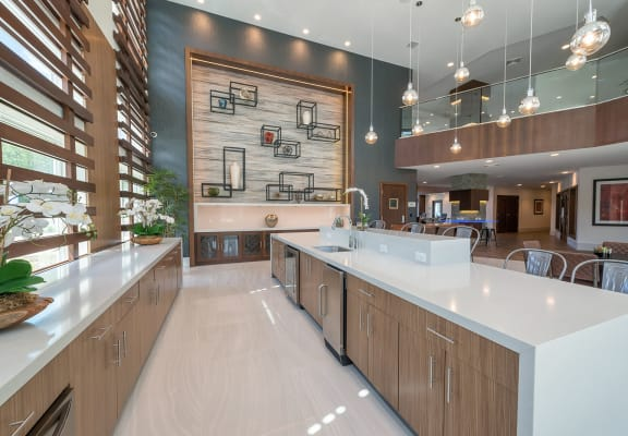 Clubhouse kitchen at Windsor at Hopkinton, 5 Constitution Ct, Hopkinton