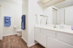One-Bedroom Apartments in Thousand Oaks CA - The Knolls Spacious Bathroom with a Large Vanity, Modern Light Fixtures, Shower, and Much More