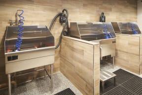 Pet washing stations