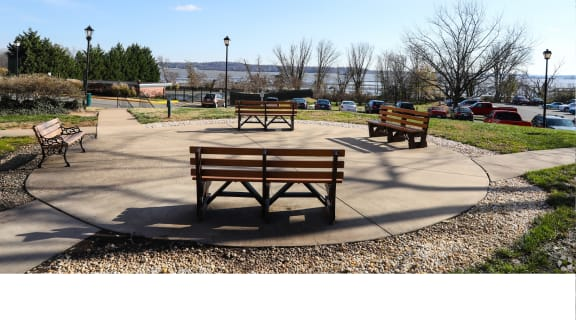 Benches for relaxing in the nature that surrounding Bridgeyard