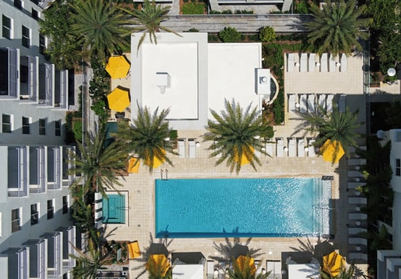 Aerial view of courtyard at Windsor at Pembroke Gardens, Pembroke Pines, FL