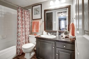 Bathroom with tub/shower and large vanity