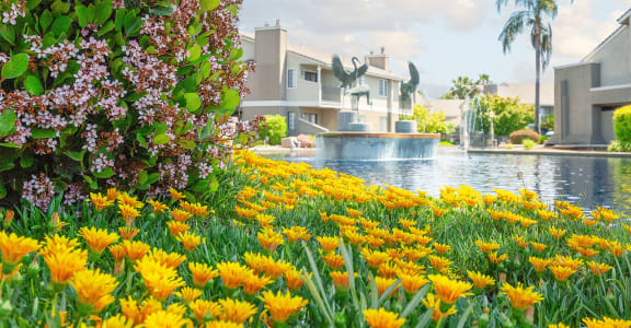 Beautiful Yellow Flowers in Front of Heron Pointe Apartments & Townhomes in Fresno, CA 93711