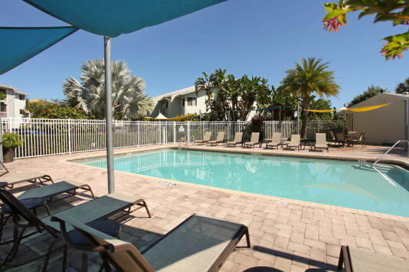 Coral Club pool and sundeck with lounge chairs and sail shades