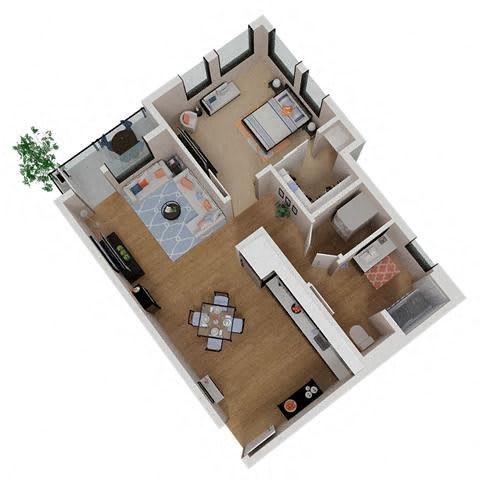 Floor Plan  1x1 Annadel Apartments For Rent in Aanta Rosa Ca 95401