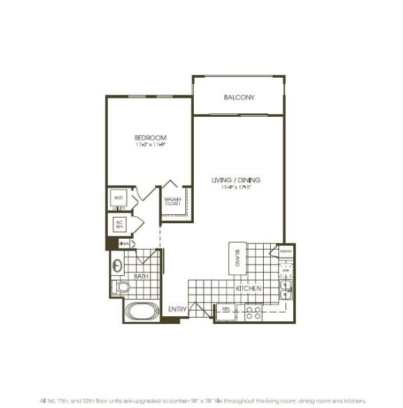 Floor Plan  One Bedroom Floor plan view