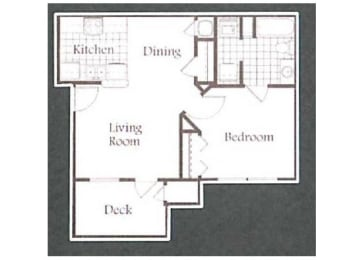 1 Bed, 1 Bath Floorplan