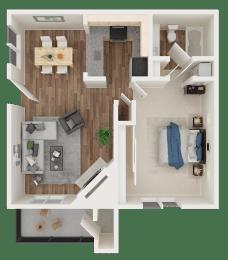 1 bedroom 1 bath 3D floor plan layout