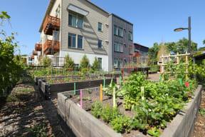 Annadel Apartments l  Personal Gardens