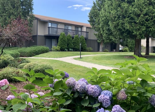 Outside path to buildings through well landscaped, grassy area.