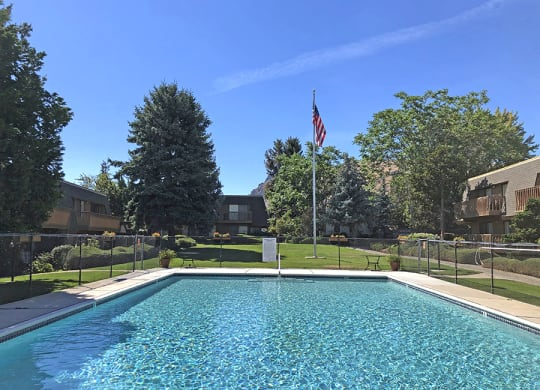 Large pool surrounded by grass and trees and has a flag pole.