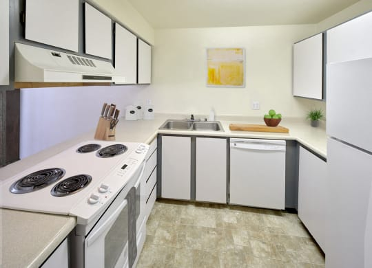 Kitchen with upper and lower cabinets, a sink, and white appliances.  There is a fridge, dishwasher, and oven with cooktop.