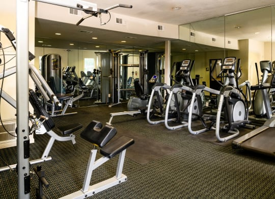 High Endurance Fitness Center at Chateaux Dupre Apartments, The Barvin Group, Houston