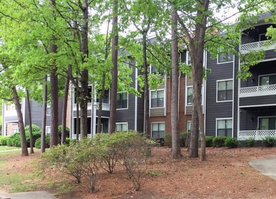 woods at Amberwood Lochmere Apartments in Cary NC at Amberwood at Lochmere   Amberwood at Lochmere East, North Carolina, 27518