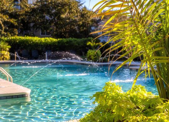 Pool at The Groves at Oakbrook apartments