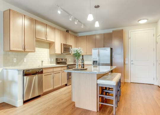 Designer Kitchen with Stainless Appliances at Element 47 by Windsor, 2180 N. Bryant St., CO