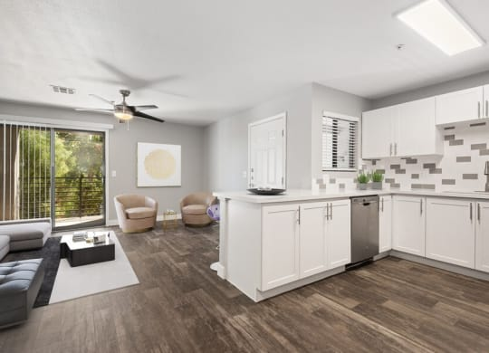 Model kitchen and living