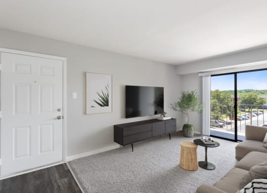 Model living room and with patio