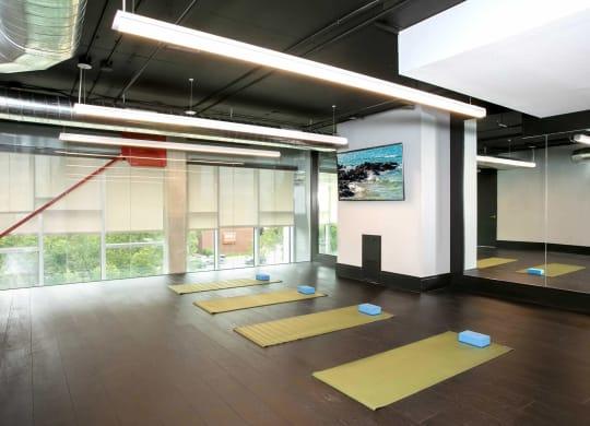 Trivista on Speer Yoga Studio