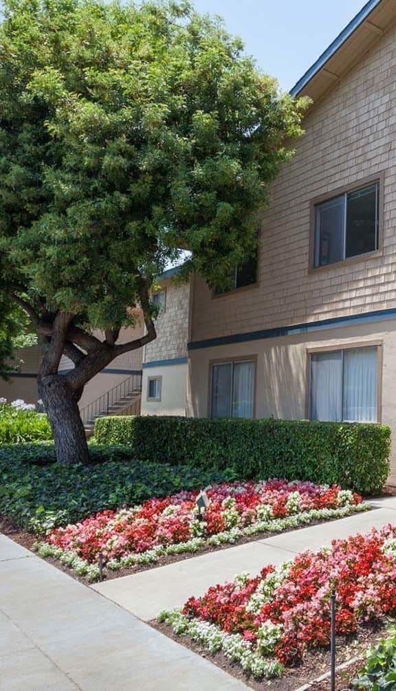 Exterior View at Cedartree, Santa Clara, California