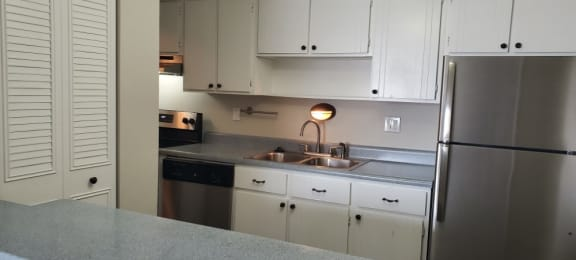 Lovely partially renovated apartment home kitchen