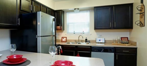 kitchen with stainless steel appliances and dark cabinets