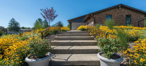 Stairs leading to building with yellow flowers