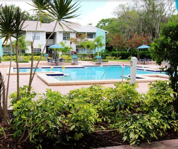 Resort-Inspired Pool with Wi-Fi Sundeck  at Ascent Citrus Park, Tampa