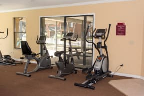 Gym with three Elliptical machines at Laurel Grove Apartment Homes, Florida, 32073