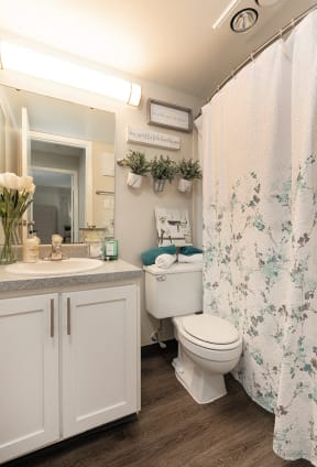 Spacious Bathroom with Hardwood Style Flooring
