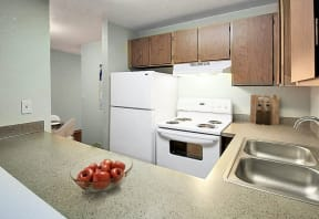 Kitchen with full-sized fridge, oven, dual sink, and plenty of counter space.
