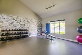 Temecula, CA Apartments - Vista Promenade Fitness Center with Ellipticals, Treadmills, Exercise Balls, TVs, and More