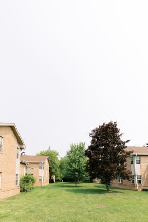 Lush Green Outdoor Spaces at Deer Run Apartments, Brown Deer, 53223