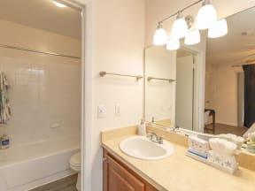lake forest apartments daytona lily renovated bathroom